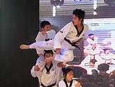 2010第76届中国电子展专题